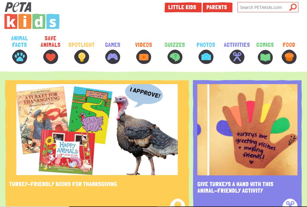 Portfolio Peta Kids WordPress Design